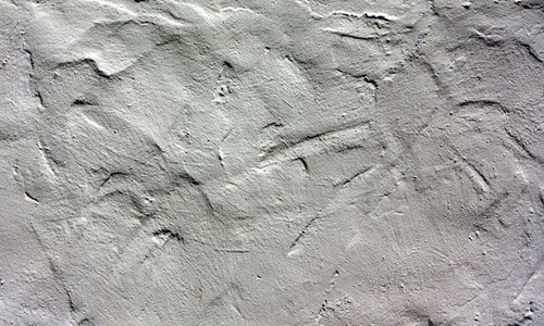 1-stucco1