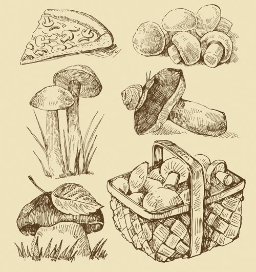 hand_drawn_pizza_1-4