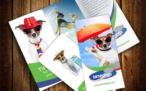 brochure-psd-template-6-e1385463723258