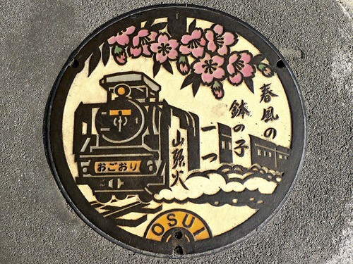 manhole-covers-japan-13
