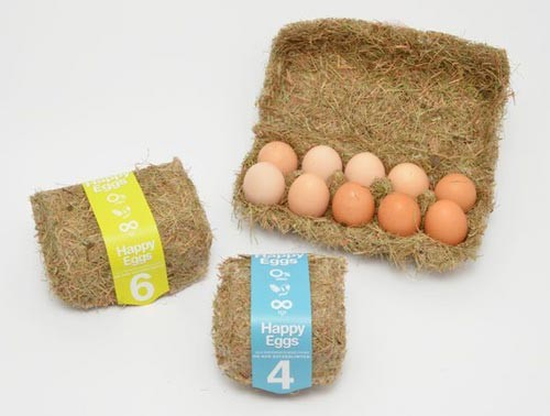 An-Eco-Friendly-Packaging-For-Eggs