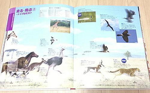 「こども大図鑑」「くらべる図鑑」が幼稚園児へのプレゼントに最適