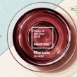 PANTONE color to the year 2015はMarsalaに!過去のPANTONE color to the yearのクイズも