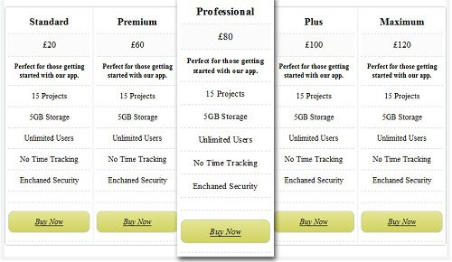 コンバージョン率アップ!デザインに優れた無料のHTML+CSSプライステーブル/価格表27