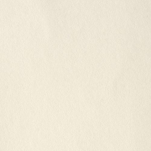 商用利用可の無料フリーテクスチャ素材:淡クリーム ラフ書籍