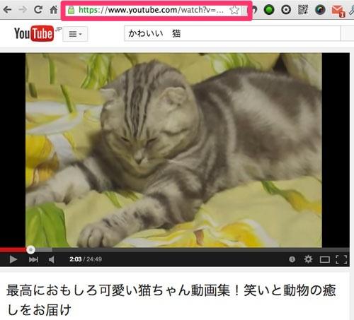 激易!YouTubeなどの動画やGoogleMapsをコピペだけでレスポンシブ化「Embed Responsively」