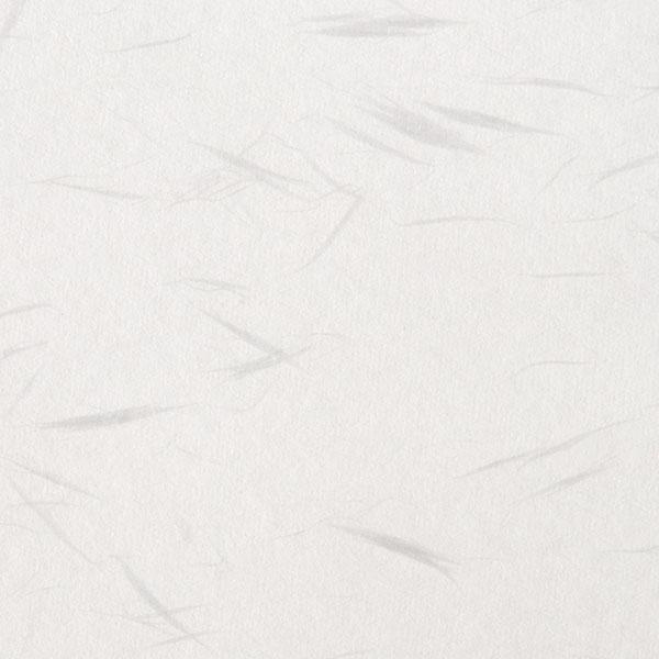 商用利用可の無料フリーテクスチャ素材:しこくてんれい 白