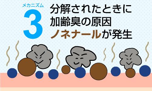 加齢臭発生のメカニズム