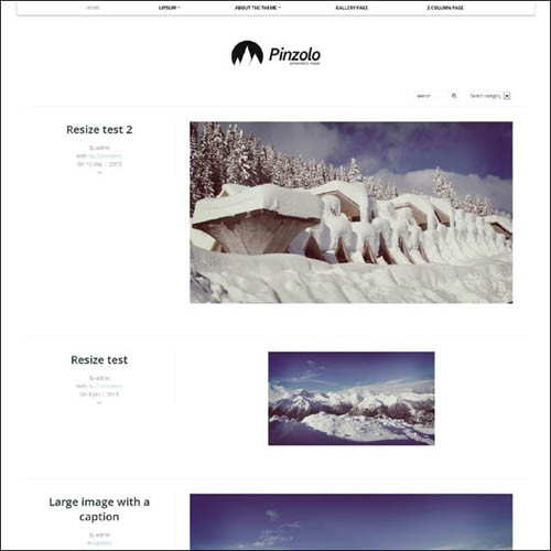 Pinzolo-WordPress-Theme