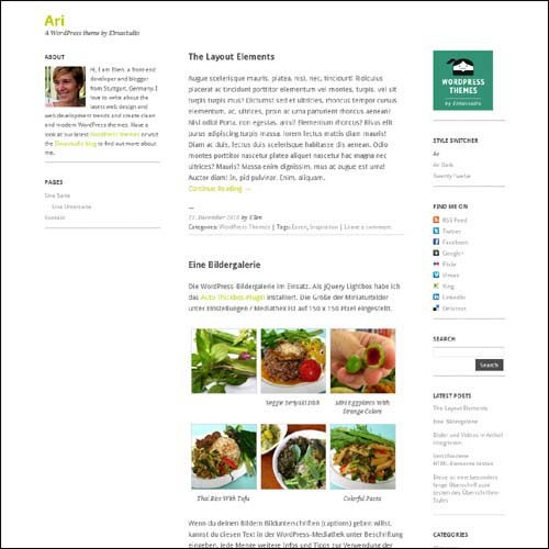 ari.free.wordpress.theme