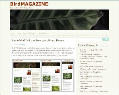 birdmagazine