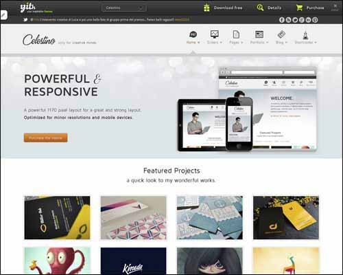 celestino-clean-and-creative-portfolio-theme