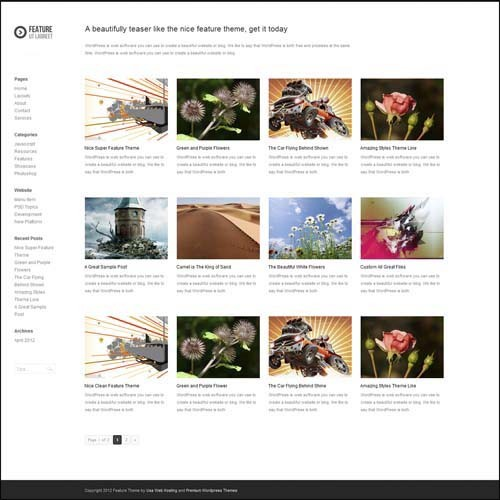 feature-premium-wordpress-theme