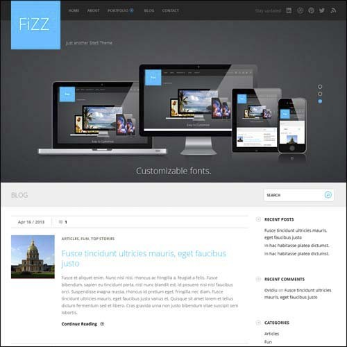 fizz.wordpress.theme