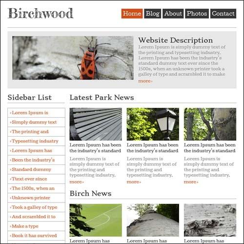 free-responsive-templates-birchwood