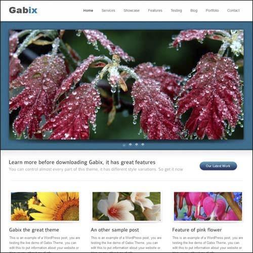 gabix-highly-professional-premium-wordpress-theme