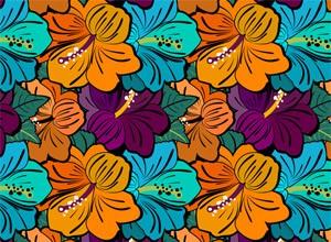hibiscus-flowe