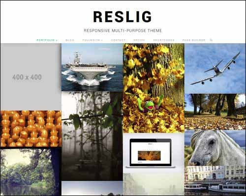 reslig-wordpress-theme