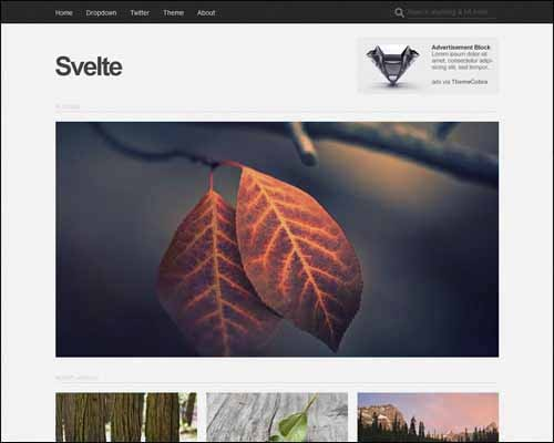 svelte-free-responsive-wordpress-theme