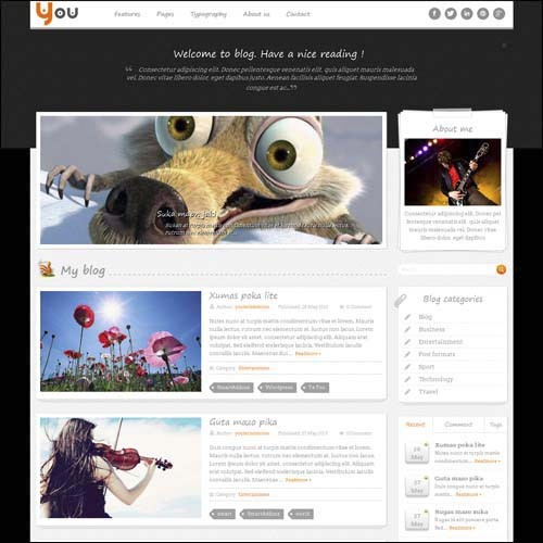 sw-you-free-responsive-wordpress-theme
