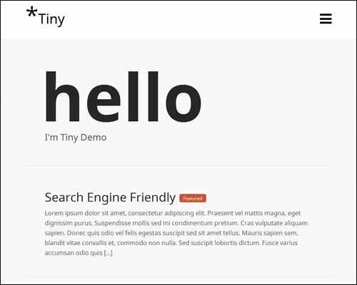 tiny_theme